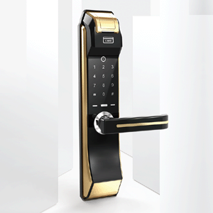 Intelligent Smart Fingerprint Password Door Locks